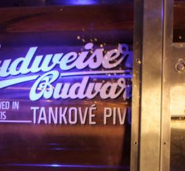 Budvar Tank Tuesdays at Zigfrid